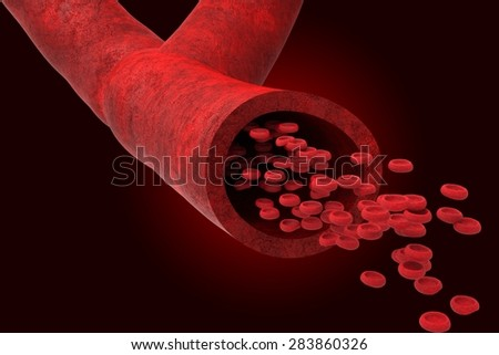 Blood vessel with bloodcells flowing through - stock photo