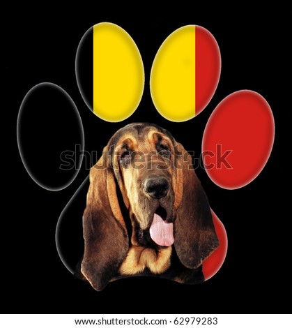 bloodhound, Dog portrait with a background of German flag in paw print - stock photo
