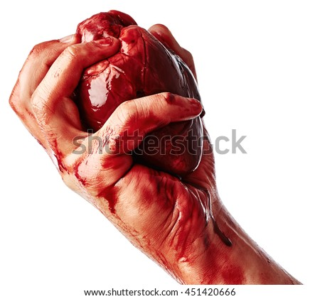Bloody heart in human hand close up isolated on white background
