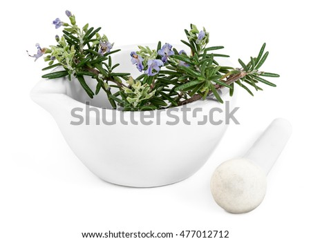 Bloomed Rosemary with Mortar and Pestle, isolated on a white background.