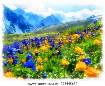 Blooming Alpine meadow with Aquilegia and Trollius  in the blue mountains. - stock photo