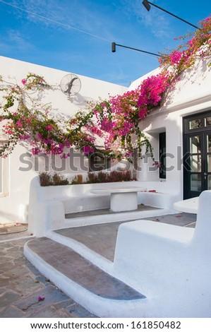 Blooming bougainvillea, framing the door in Mykonos, Greece. flowers in the hotel on the island of Mykonos in Greece ... - stock photo