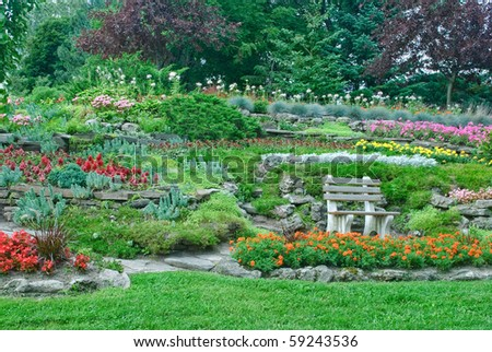 Blooming flowers, decorative plants and bushes in a summer park with bench and marigolds in front