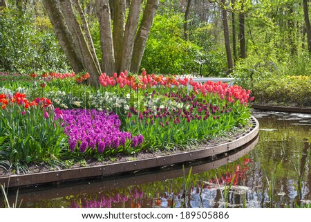 Blooming flowers in a park with a pond - stock photo