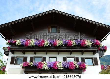 blooming lot of color petunia flowers on balcony - stock photo