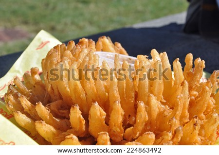 Blooming Onion, a deep fried snack food offered at the North Carolina State Fair in Raleigh - stock photo