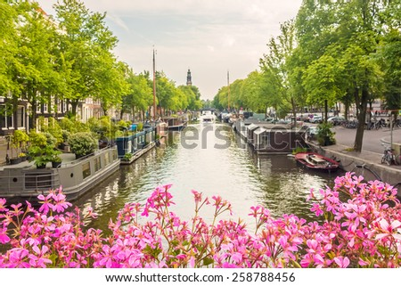 Blooming pink flowers on an Amsterdam canal bridge in The Netherlands - stock photo