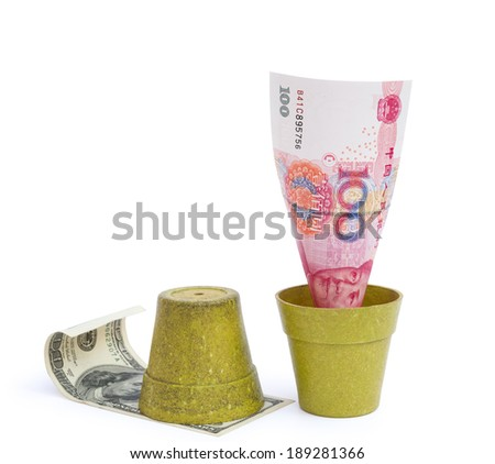 blooming RMB and rotten USD with clipping path, financial concept - stock photo