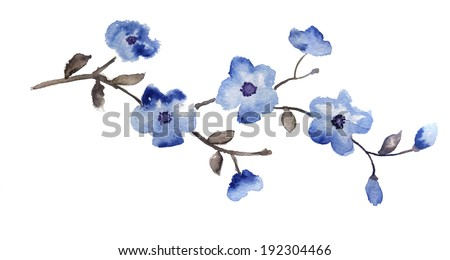 blooming tree branch with blue flowers on a white background - stock photo