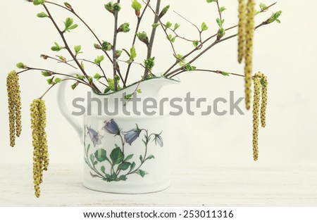Blossoming branches of birch and cherry in a vase - stock photo