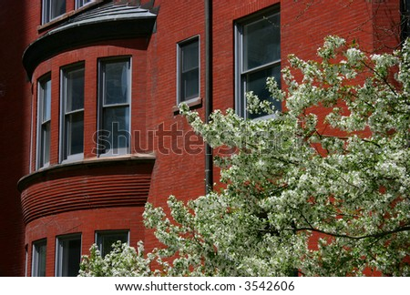 Blossoming tree in front of a red brick house - stock photo