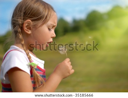 Blowing dandelion on a meadow - stock photo