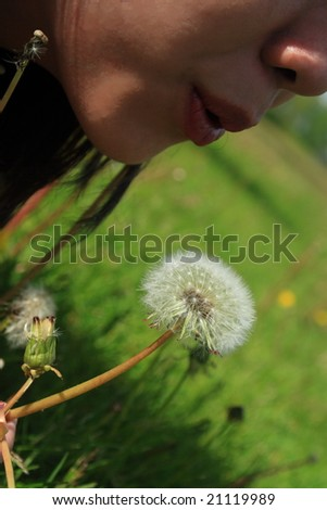 Blowing the Dandelion - stock photo