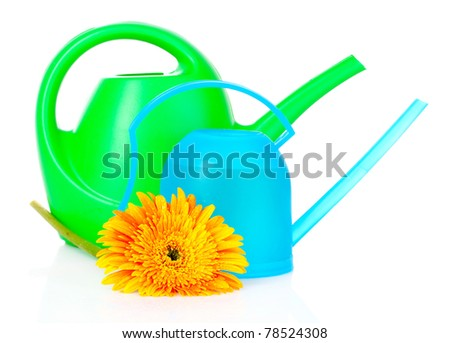 Blue and green watering can with flower isolated on white