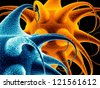 blue and orange bacterias - stock photo