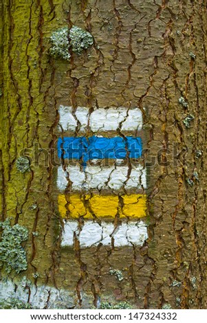 blue and yellow signpost on tree - stock photo