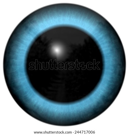 Blue animal eye with colored iris, detail view into eye bulb  - stock photo