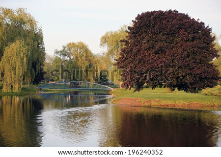 Blue bridge in a park with willows and geese swimming in water - stock photo