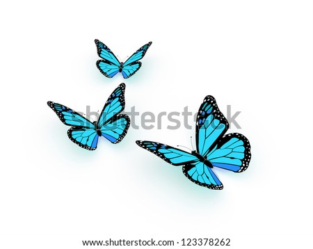 Blue butterfly isolated on white background rendered