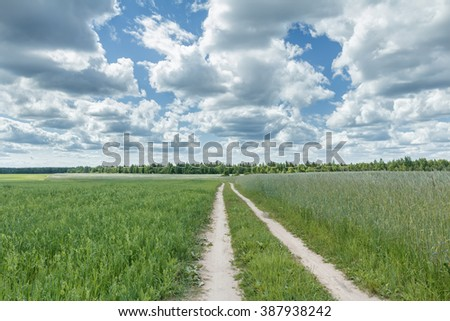 Blue cloudy sky above rural dirt road between rye and oat with pea plants farm fields - stock photo