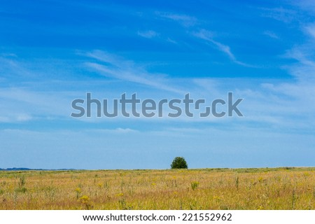 Blue cloudy sky over a green summer field - stock photo