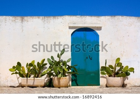 Blue door and cactus in Apulia, Italy - stock photo