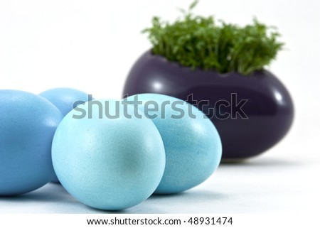 blue easter eggs with fresh cress