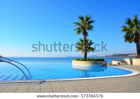 Blue endless swimming pool with palm tree - stock photo