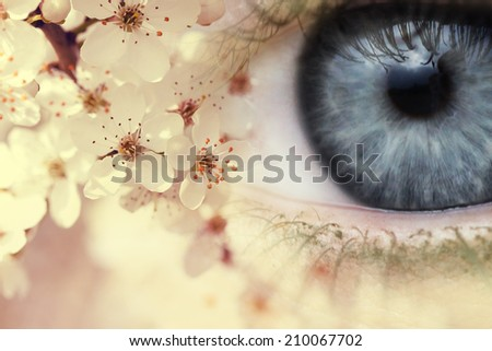 Blue eye and blooming flowers - stock photo