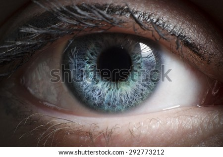 Blue eye macro shot  - stock photo