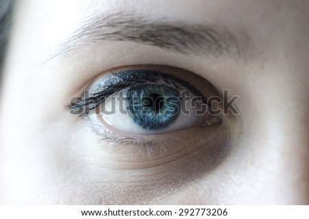 Blue eye woman macro shot  - stock photo