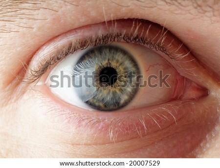 Blue eyes - stock photo