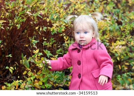 Blue eyes girl in the autumn park - stock photo