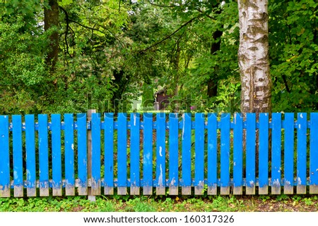 Blue fence in front of a garden