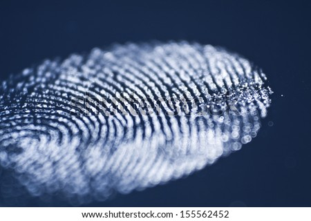 Blue Fingerprint  - stock photo