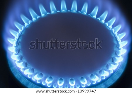 Blue flames of a gas stove - stock photo
