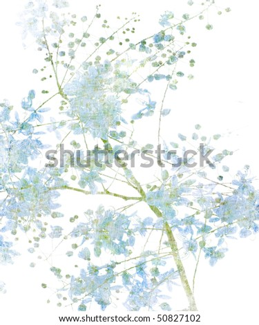 Blue Flower Blossom on White - stock photo
