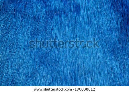 Blue fur background - stock photo