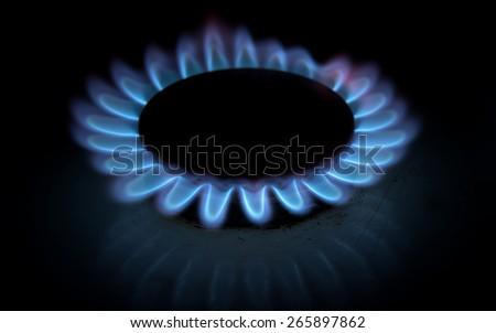 blue gas stove on black - stock photo