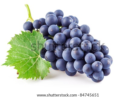 blue grapes with green leaf isolated on white background - stock photo