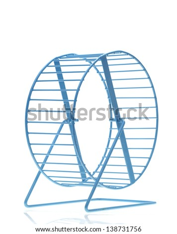 Blue hamster wheel on a white background - stock photo
