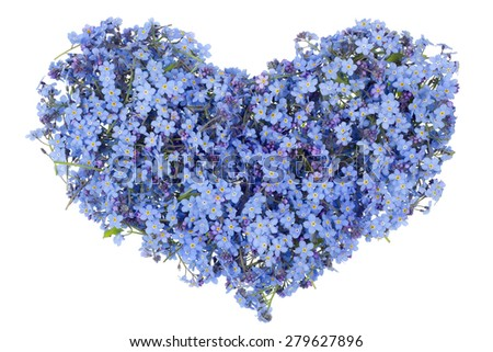 Blue heart of the gentle guy isolated concept. The symbol of heart is made of blue spring flowers - stock photo
