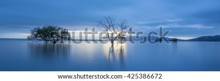 Blue Hour Dawn Bushland Beach, North Queensland, Australia - stock photo