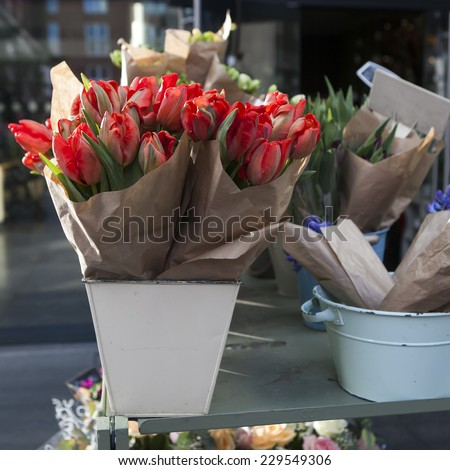 blue hyacinths and red tulips - stock photo