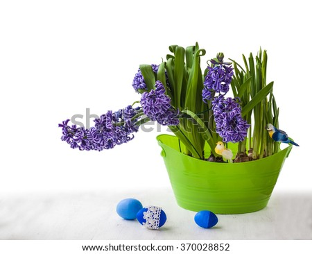Blue hyacinths in a green bowl and blue easter eggs - stock photo