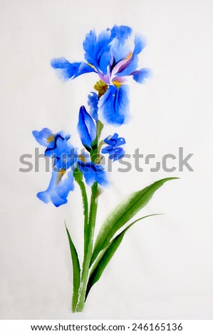 Blue iris flower watercolor painting on rice paper, chinese style. - stock photo