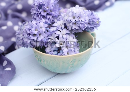 Blue, lilac hyacinth  in a green ceramic cup  bowl on wooden pale duck egg blue painted wooden boards with spotty fabric in background , pretty spring image , shallow depth of field , mothers day - stock photo