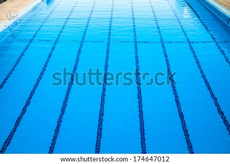 Blue line in swimming pool - stock photo