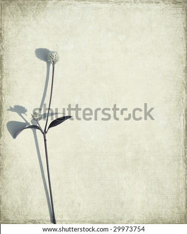 blue long stem and seed head on grunge background 2 - stock photo