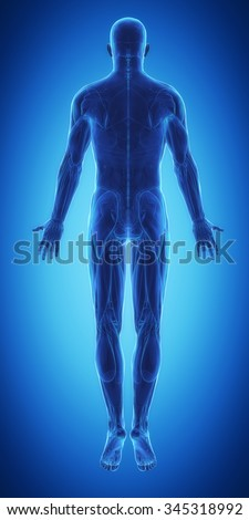 Blue man ready for muscle layer - stock photo